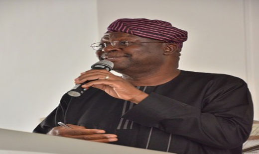 Prof. Olu Lafe Photo