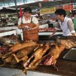 Dog Meat Photo