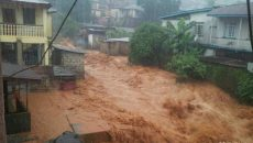 Mudslide in Siera Leone Photo