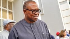 Peter Obi Photo
